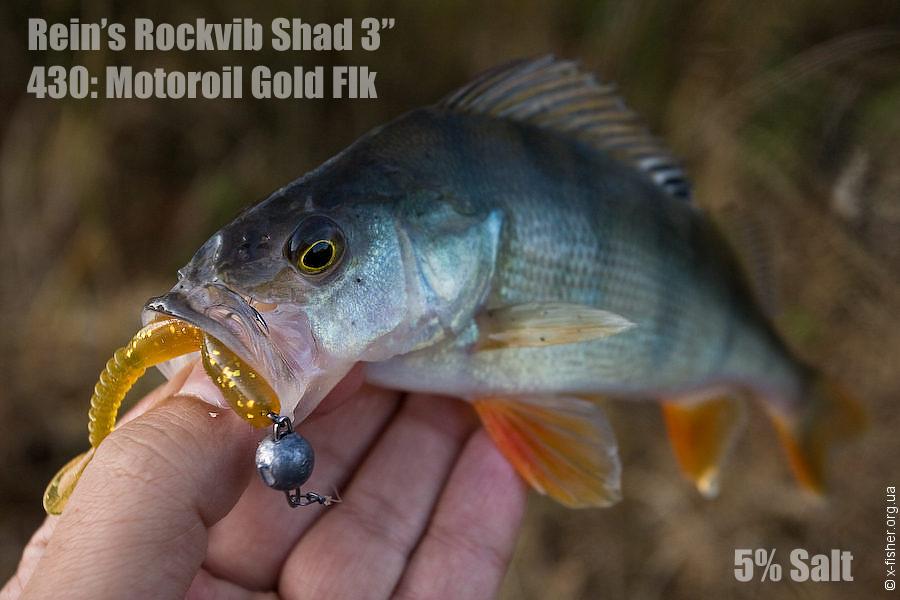 reins_rockvib_shad_3_motoroil_gold_flk.jpg